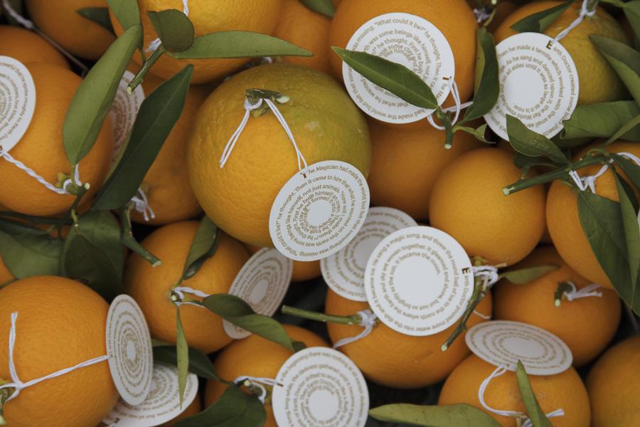 citrus-09