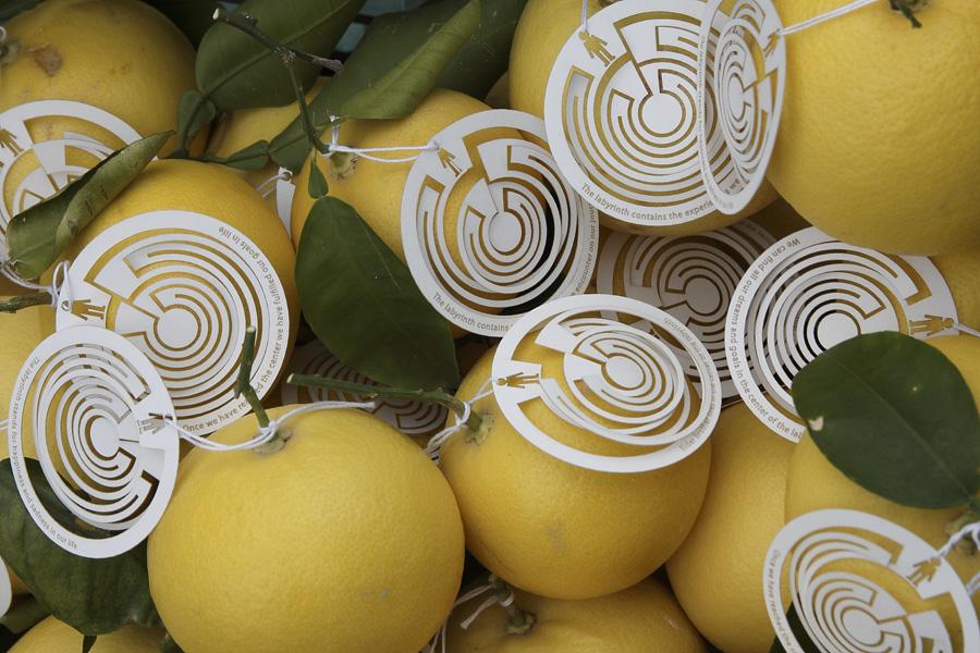 citrus-35
