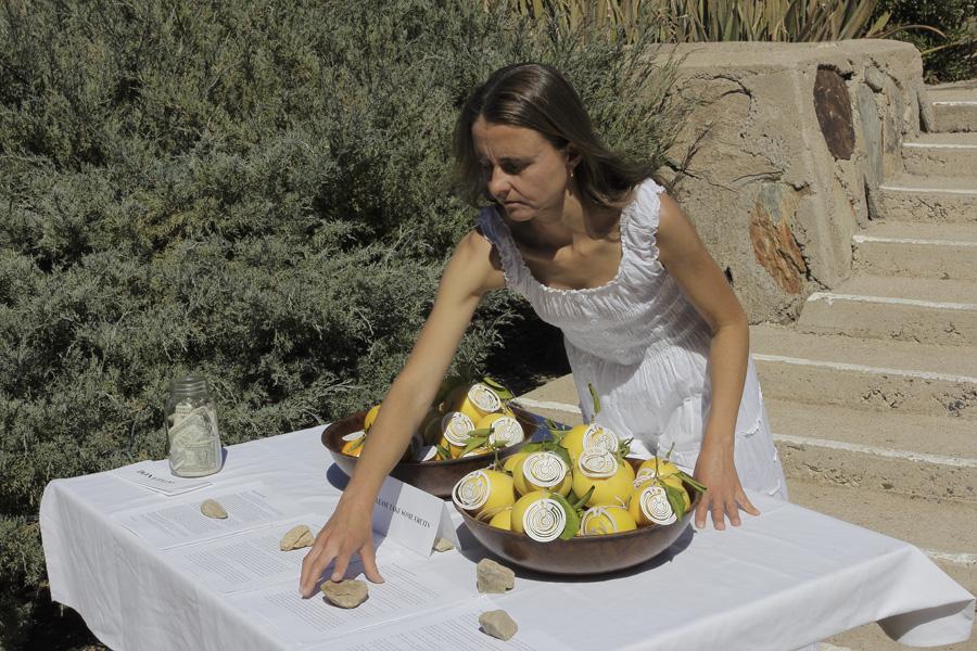 citrus-36
