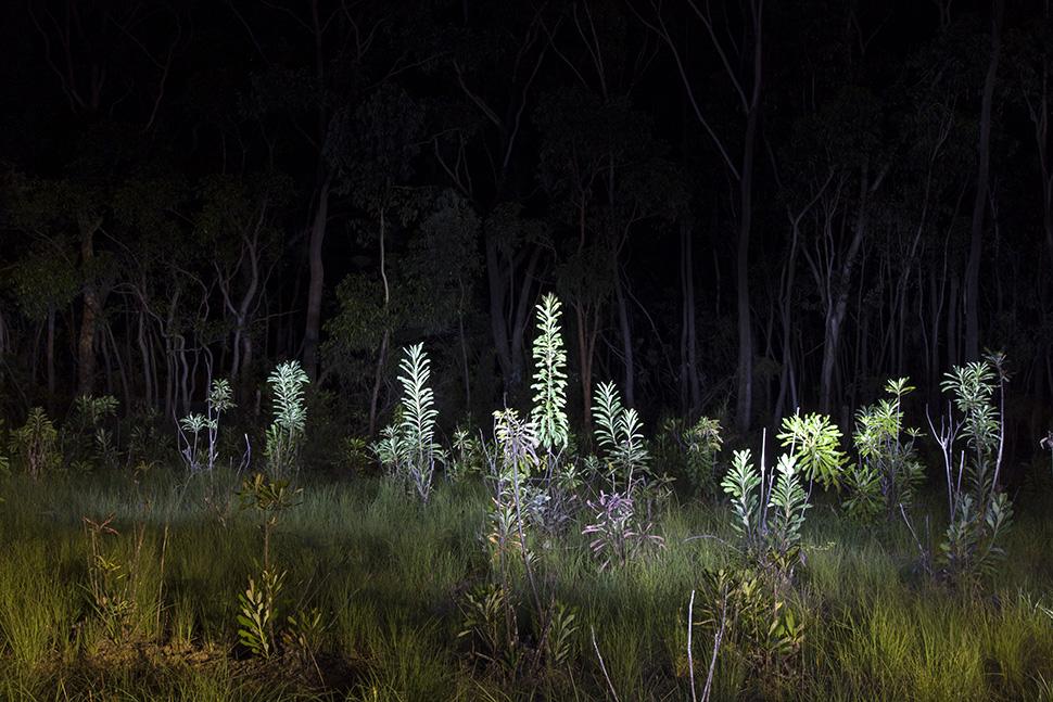01-Australia nightshots